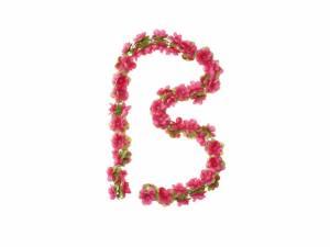 Basil Blumengirlande fuchsia